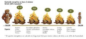 contenido energético en base al volumen leñas